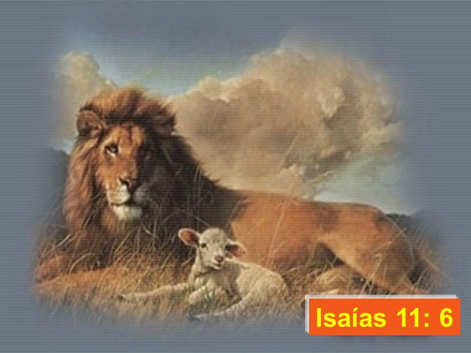 Isaías 11: 6