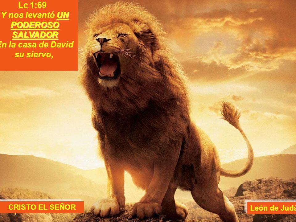 Y nos levantó UN PODEROSO SALVADOR En la casa de David su siervo,