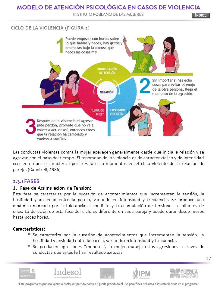 2.3.1 FASES CICLO DE LA VIOLENCIA (FIGURA 2)