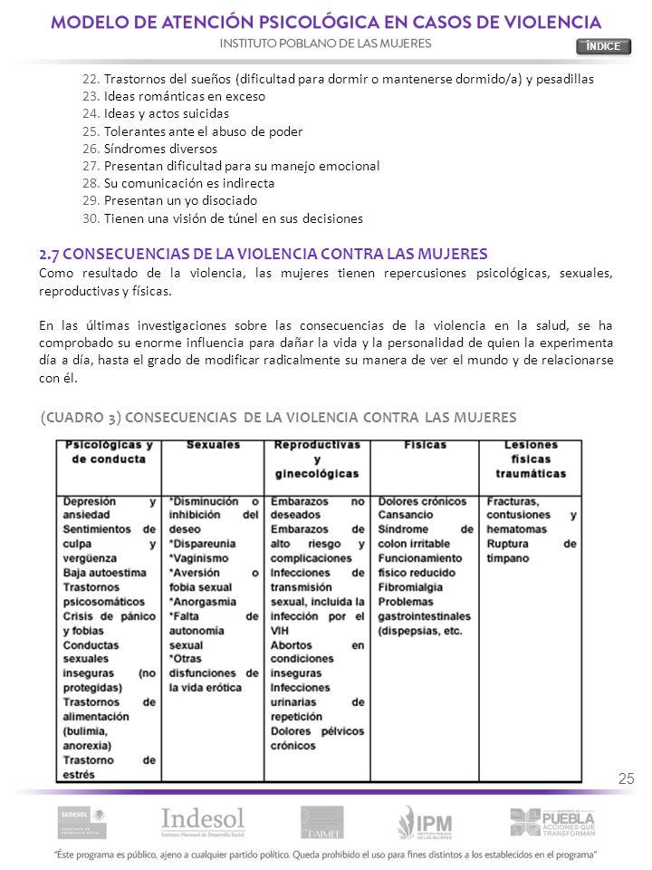 2.7 CONSECUENCIAS DE LA VIOLENCIA CONTRA LAS MUJERES