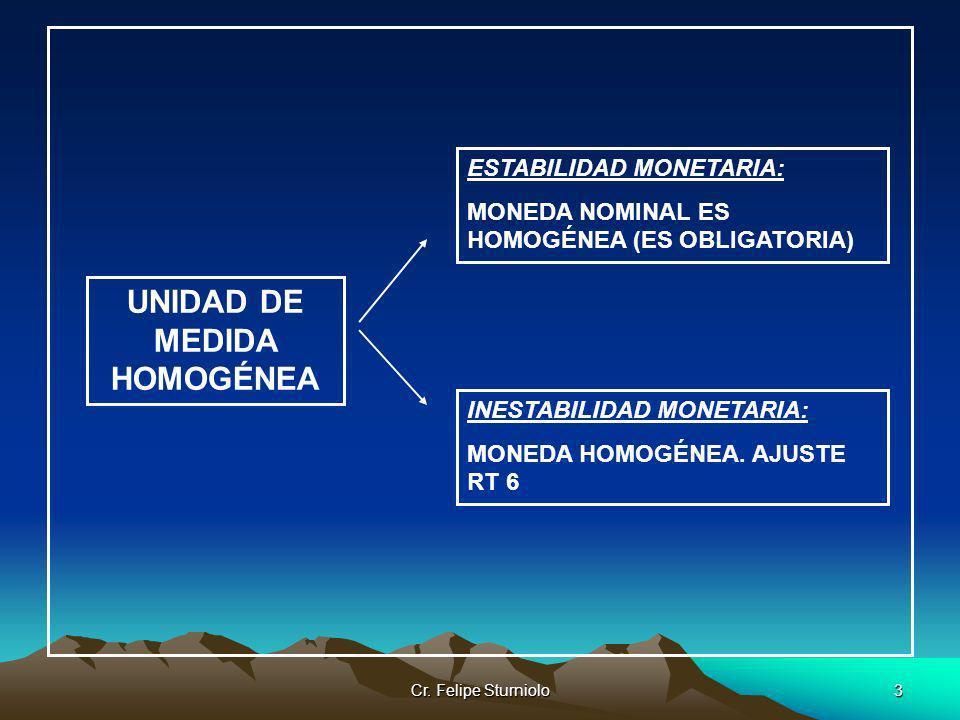 UNIDAD DE MEDIDA HOMOGÉNEA
