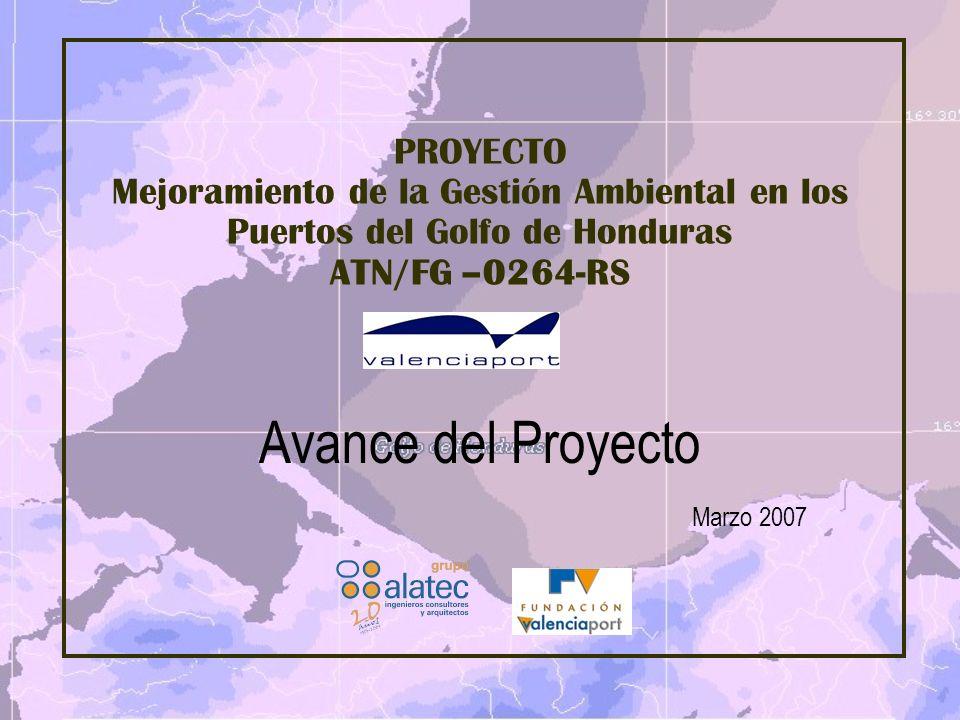 Avance del Proyecto Marzo 2007