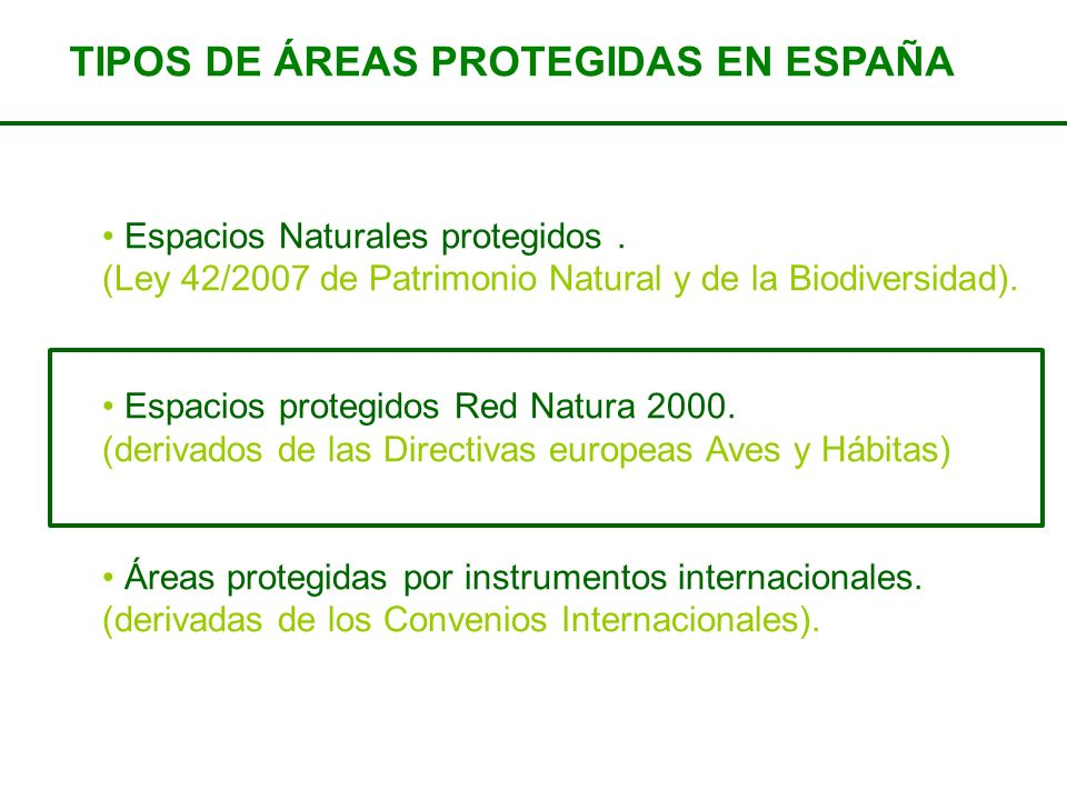 TIPOS DE ÁREAS PROTEGIDAS EN ESPAÑA