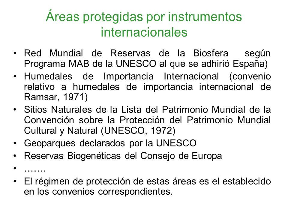 Áreas protegidas por instrumentos internacionales