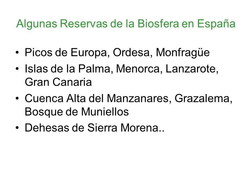 Algunas Reservas de la Biosfera en España