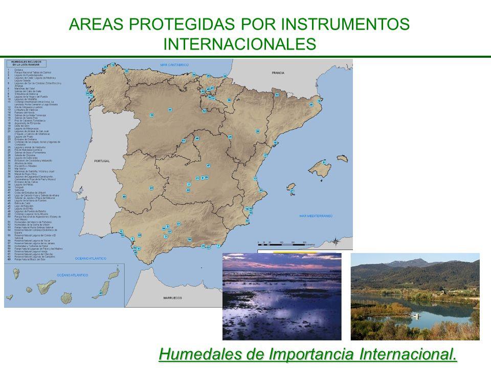 AREAS PROTEGIDAS POR INSTRUMENTOS INTERNACIONALES