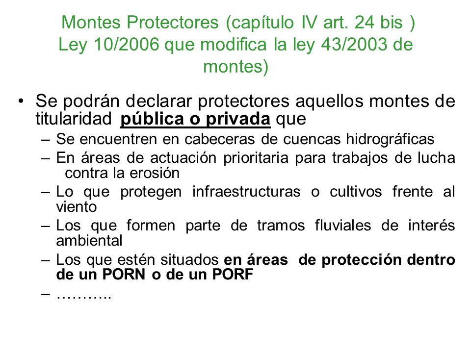 Montes Protectores (capítulo IV art