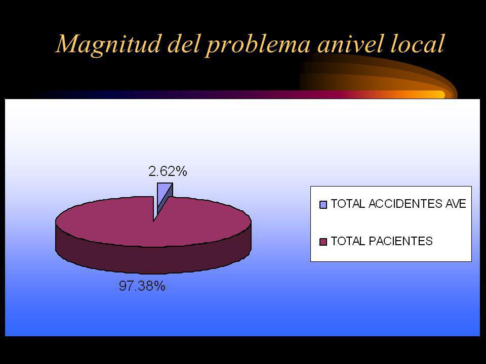 Magnitud del problema anivel local