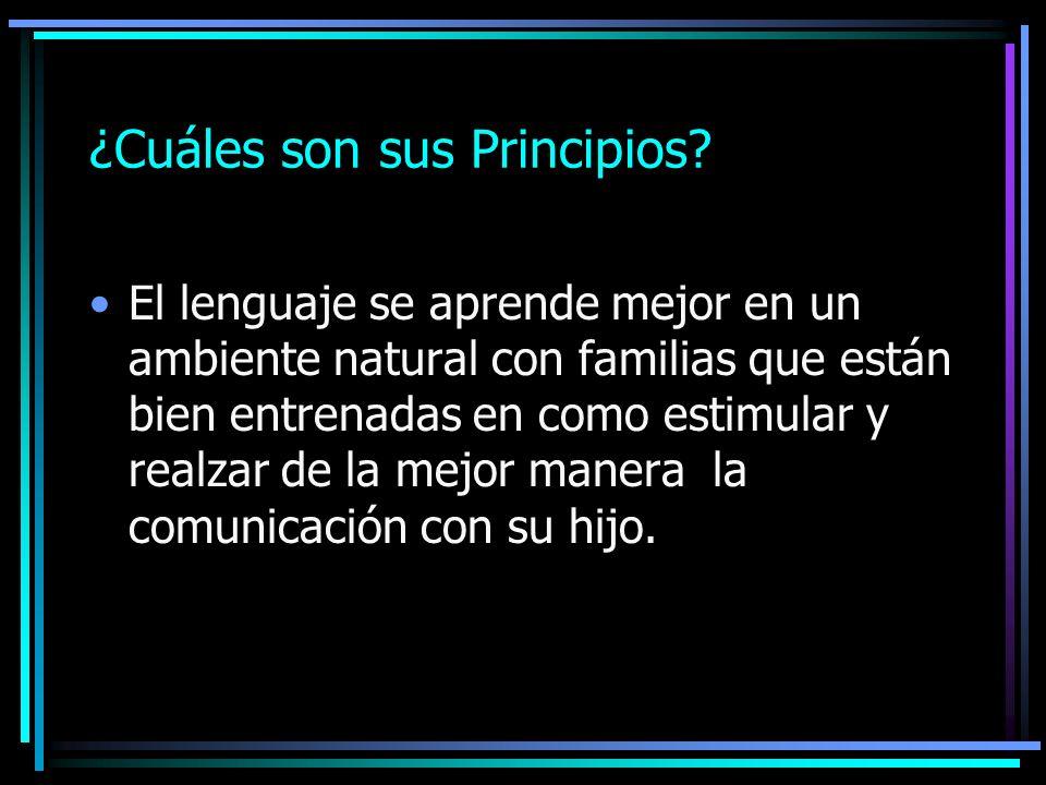 ¿Cuáles son sus Principios
