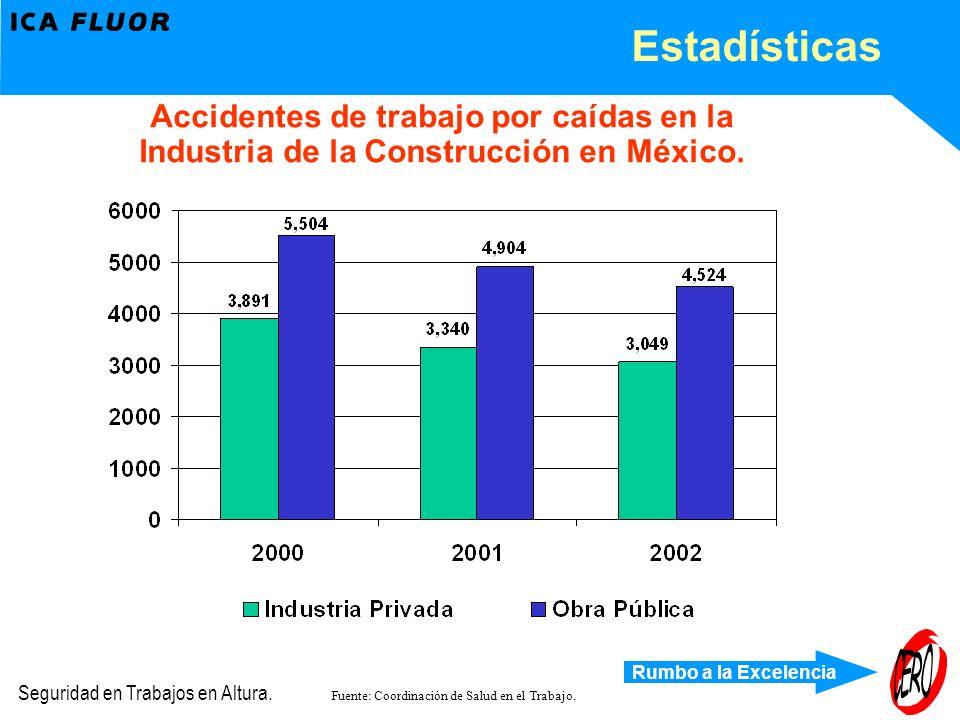 Estadísticas Accidentes de trabajo por caídas en la Industria de la Construcción en México.