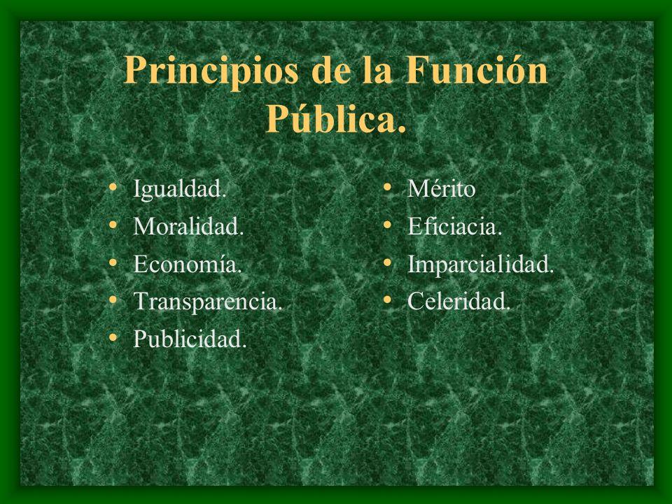Principios de la Función Pública.