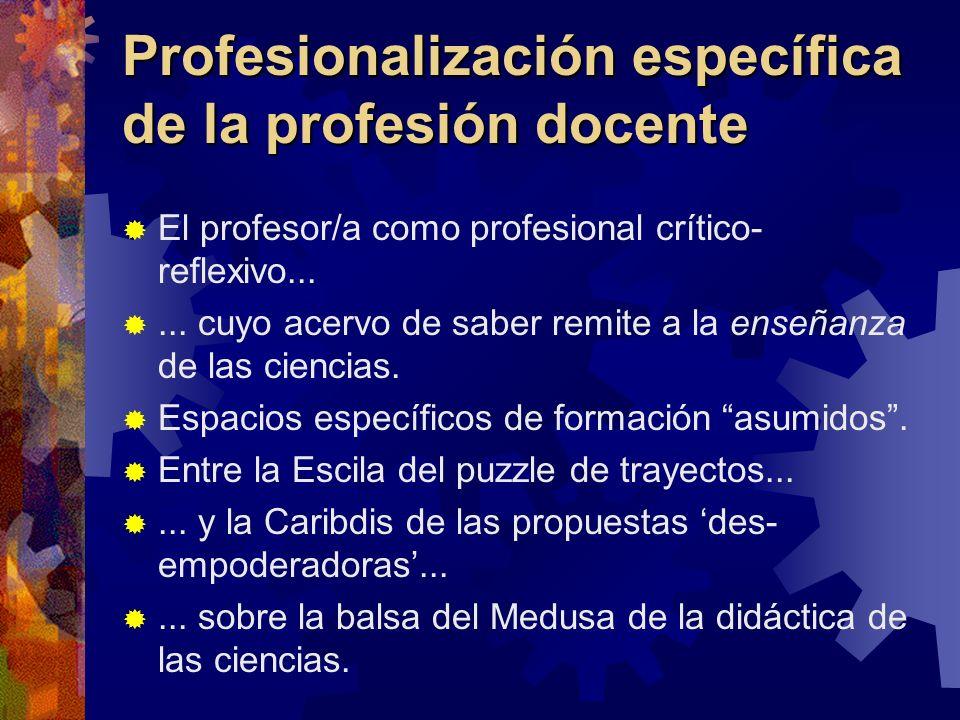 Profesionalización específica de la profesión docente