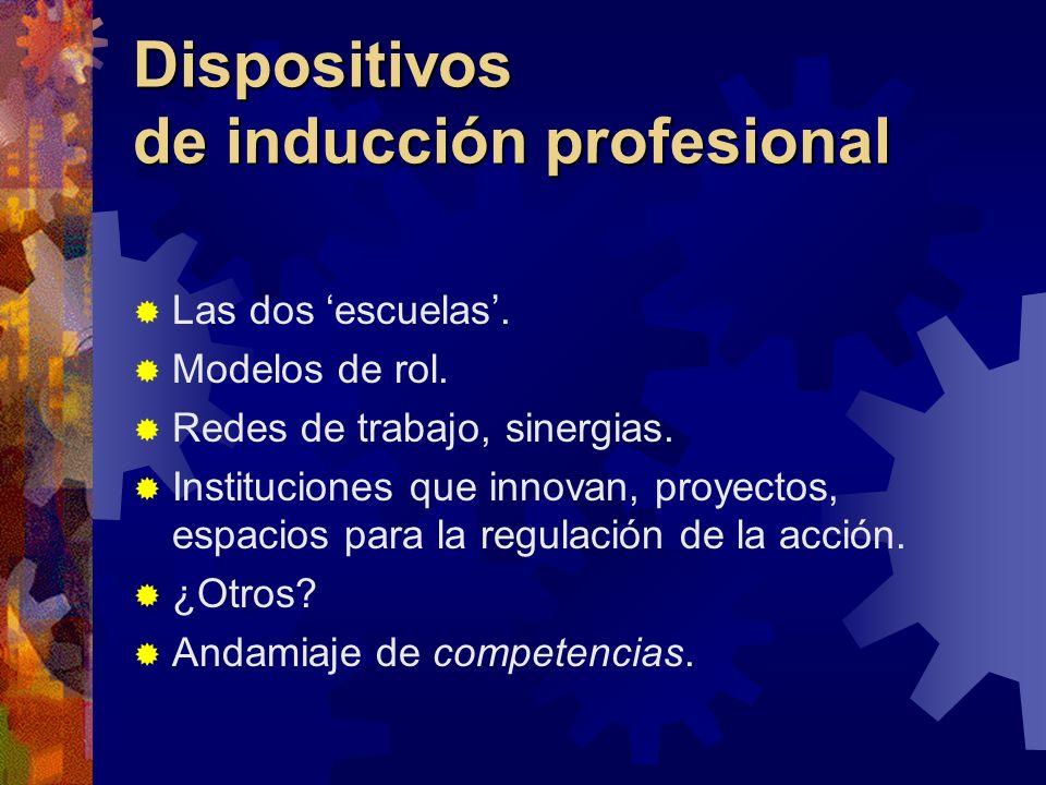 Dispositivos de inducción profesional