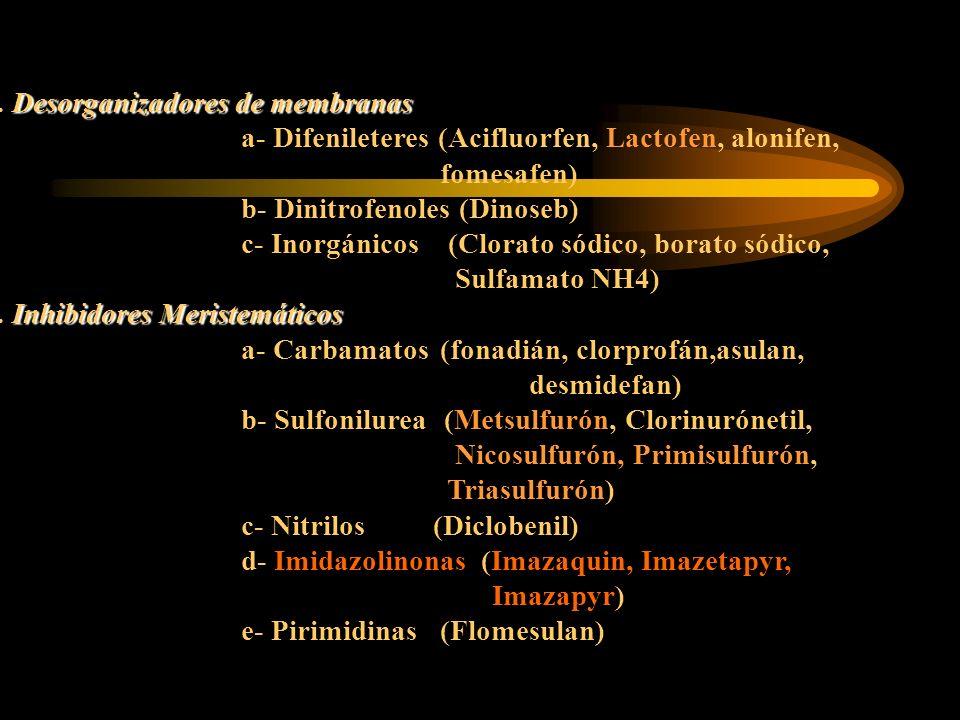 2. Desorganizadores de membranas