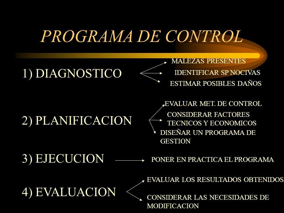 PROGRAMA DE CONTROL 1) DIAGNOSTICO 2) PLANIFICACION 3) EJECUCION