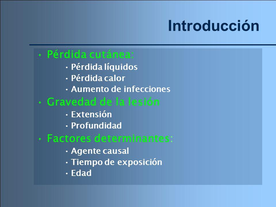 Introducción Pérdida cutánea: Gravedad de la lesión