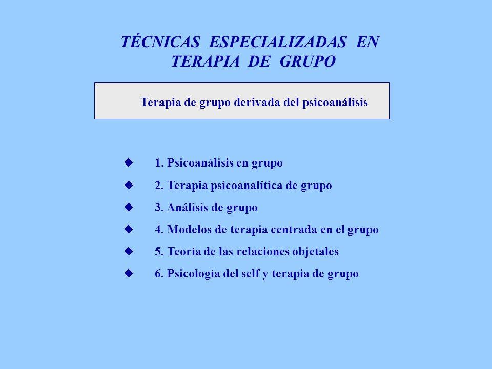 TÉCNICAS ESPECIALIZADAS EN
