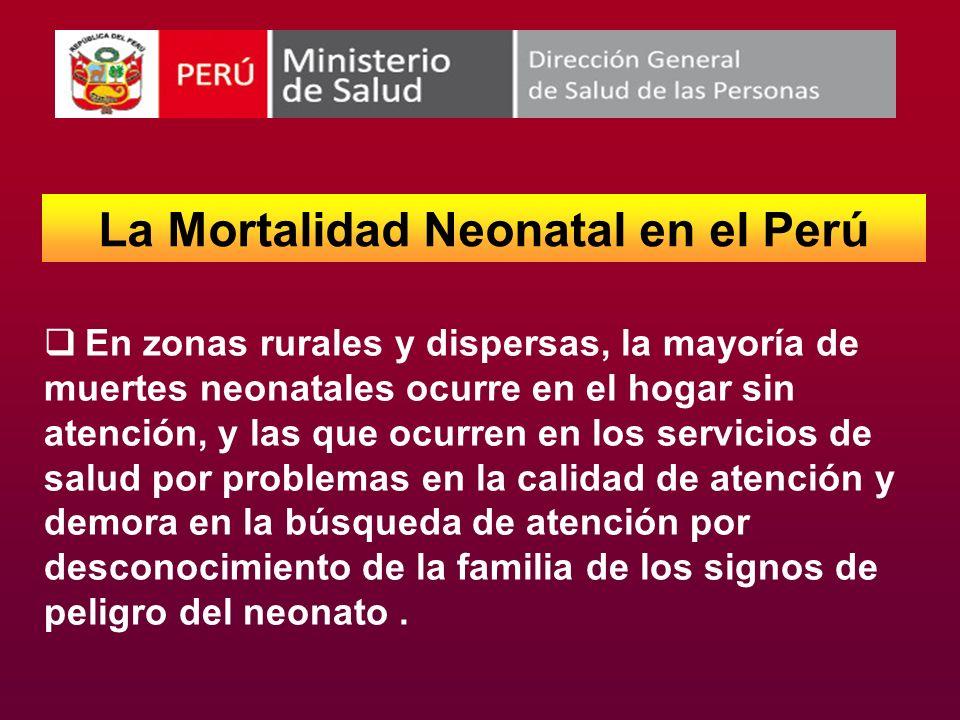 La Mortalidad Neonatal en el Perú
