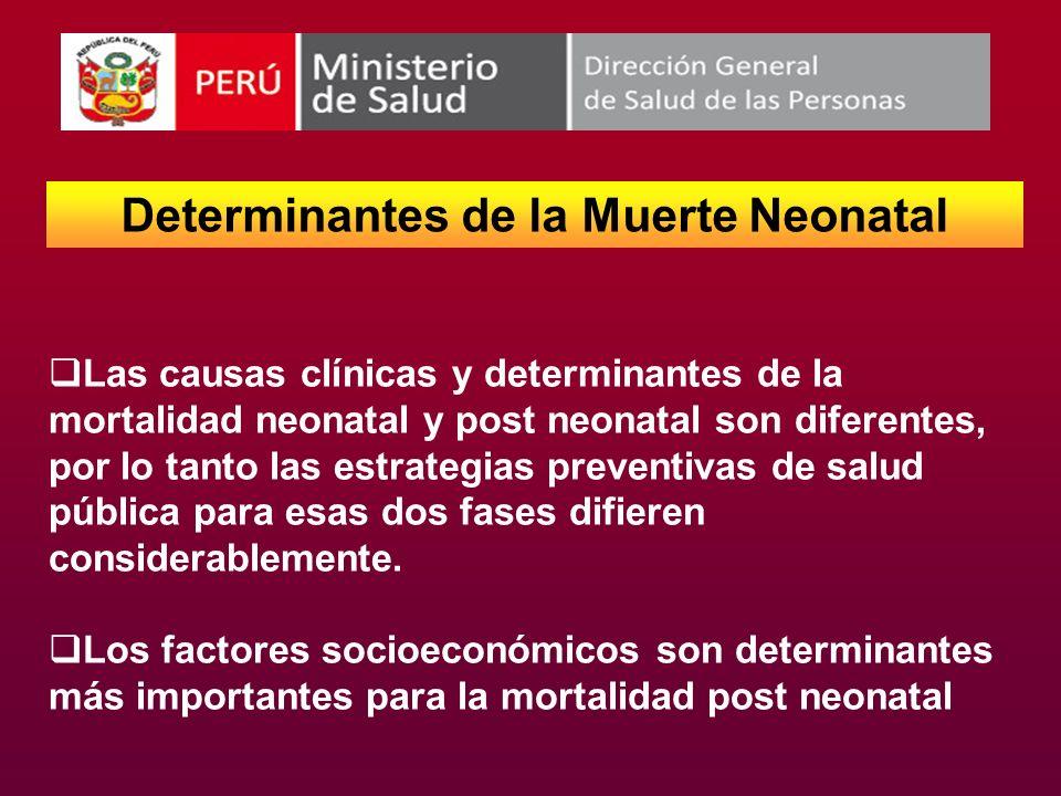 Determinantes de la Muerte Neonatal