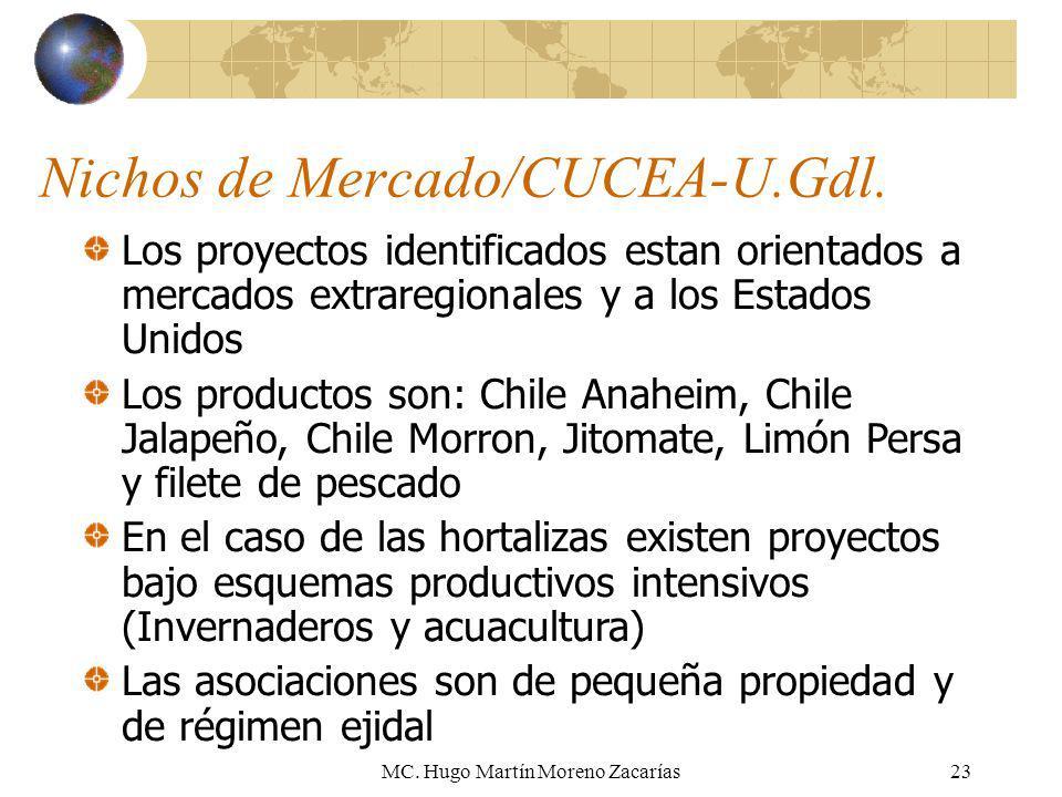 Nichos de Mercado/CUCEA-U.Gdl.