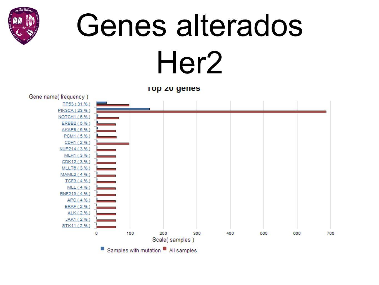 Genes alterados Her2