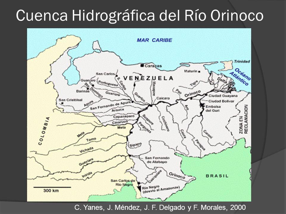 Cuenca Hidrográfica del Río Orinoco