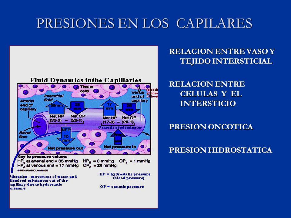PRESIONES EN LOS CAPILARES