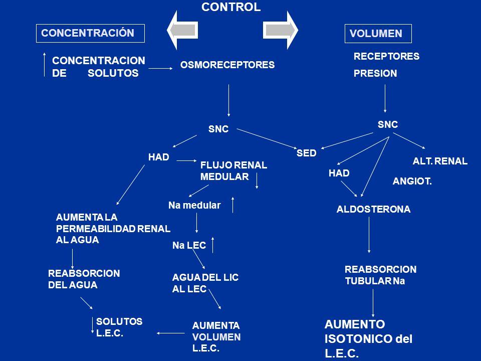 CONTROL AUMENTO ISOTONICO del L.E.C. CONCENTRACIÓN VOLUMEN