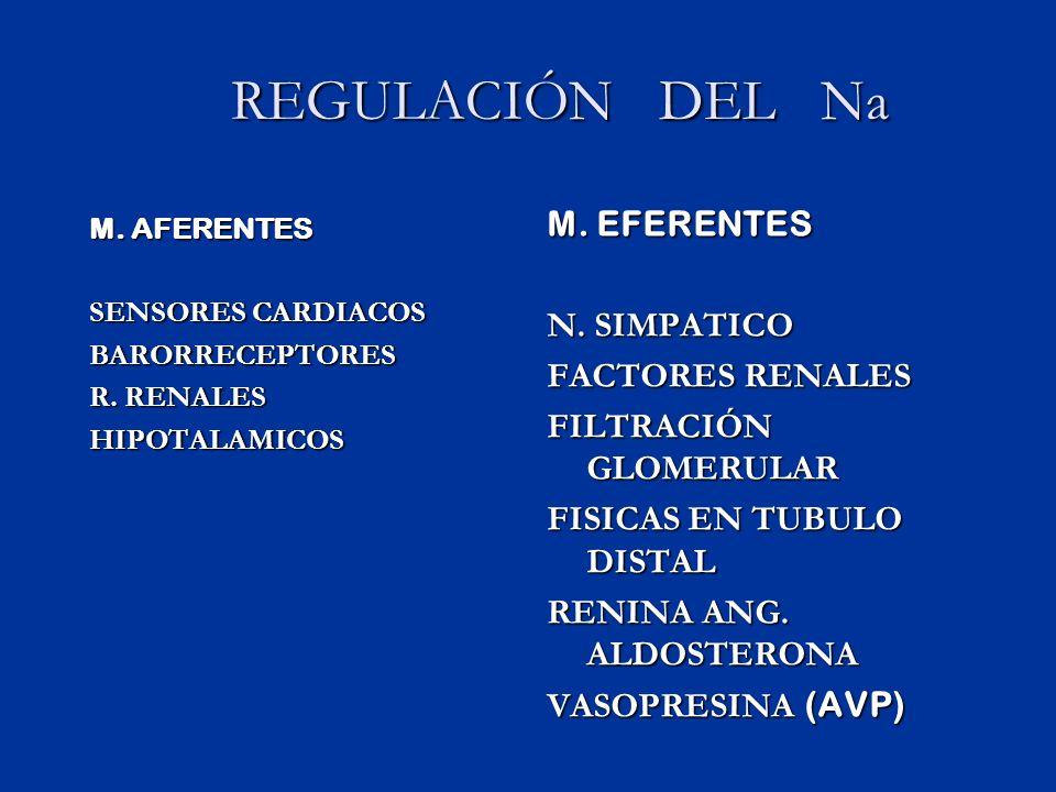 REGULACIÓN DEL Na M. EFERENTES N. SIMPATICO FACTORES RENALES