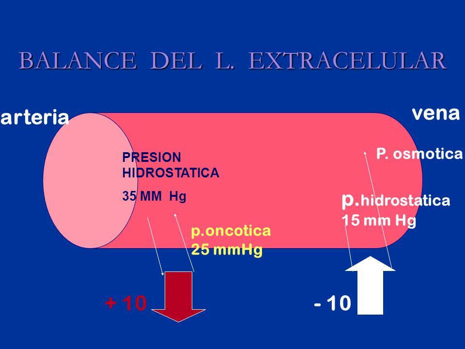 BALANCE DEL L. EXTRACELULAR