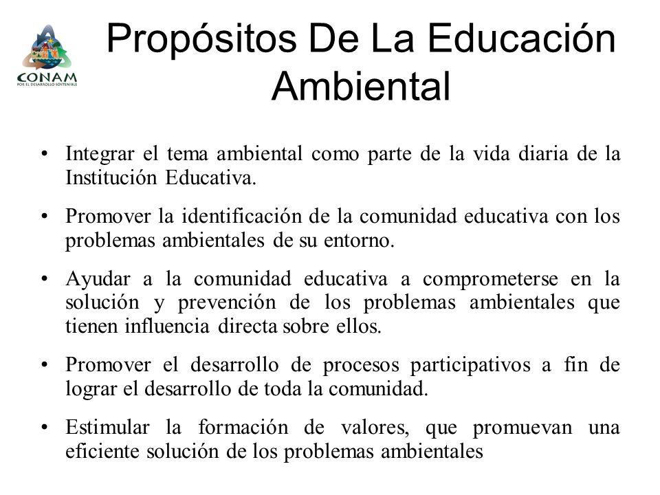 Propósitos De La Educación Ambiental