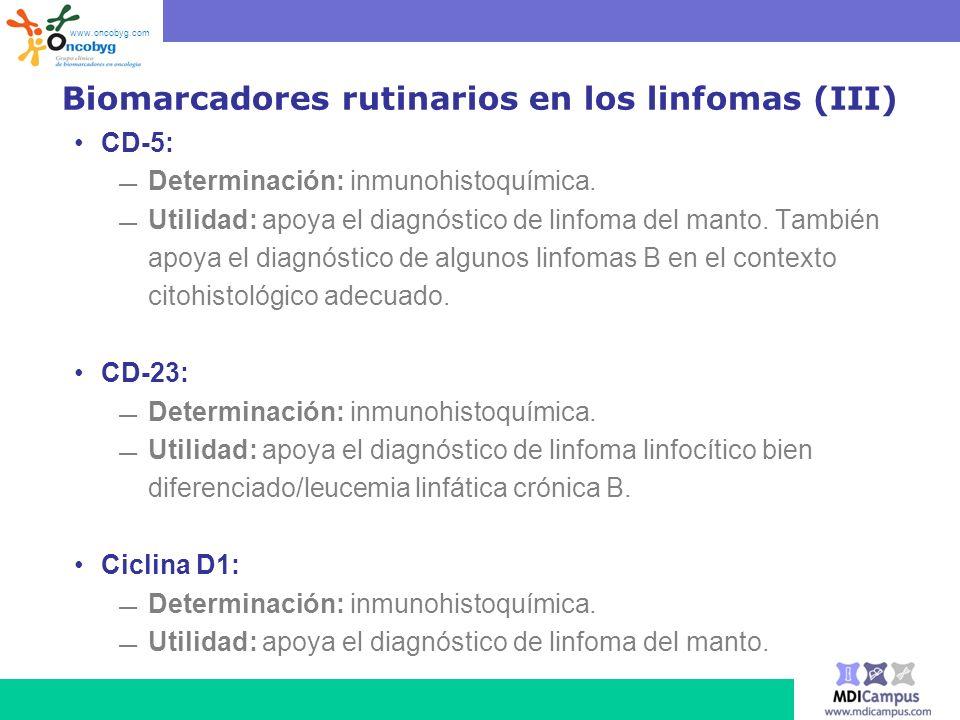 Biomarcadores rutinarios en los linfomas (III)