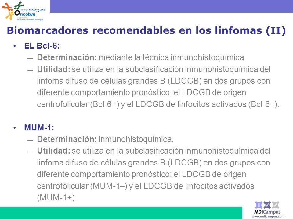 Biomarcadores recomendables en los linfomas (II)