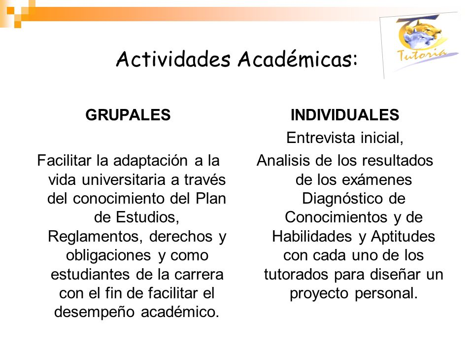 Actividades Académicas: