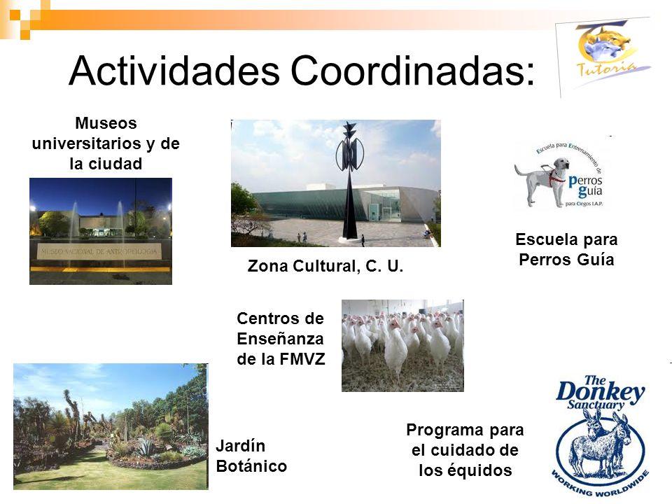 Actividades Coordinadas: