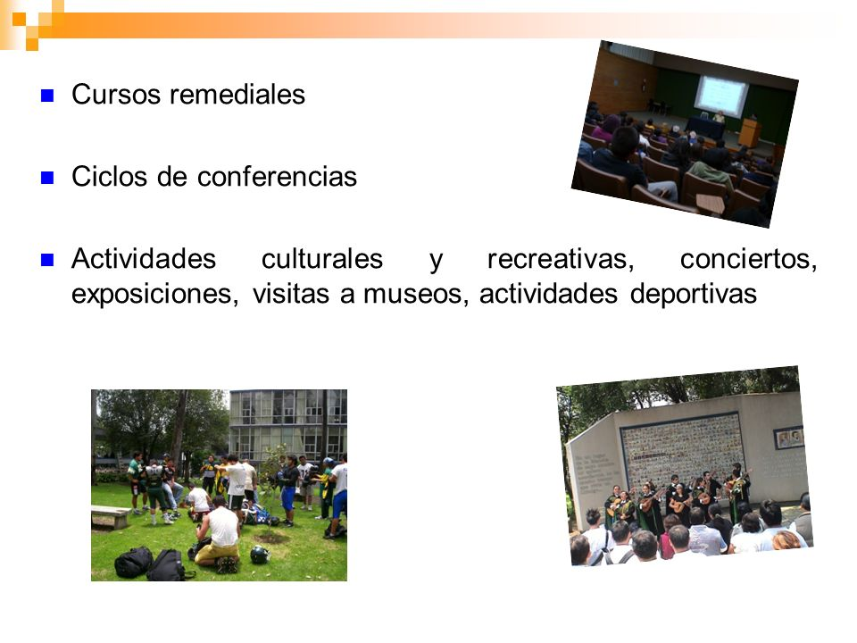 Cursos remediales Ciclos de conferencias.