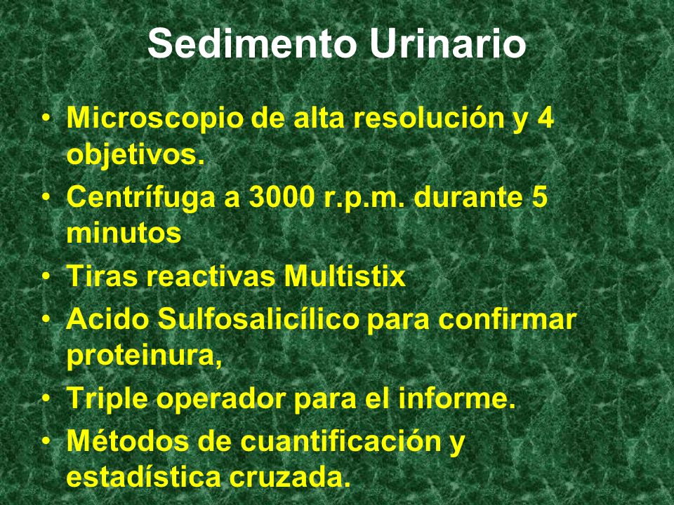 Sedimento Urinario Microscopio de alta resolución y 4 objetivos.