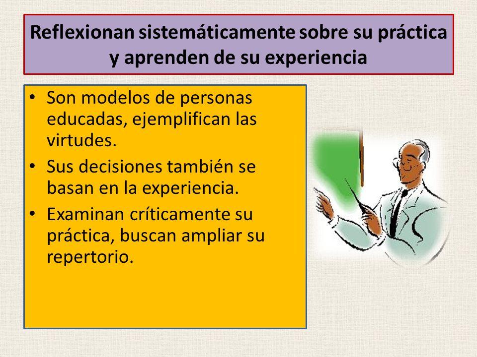 Reflexionan sistemáticamente sobre su práctica y aprenden de su experiencia