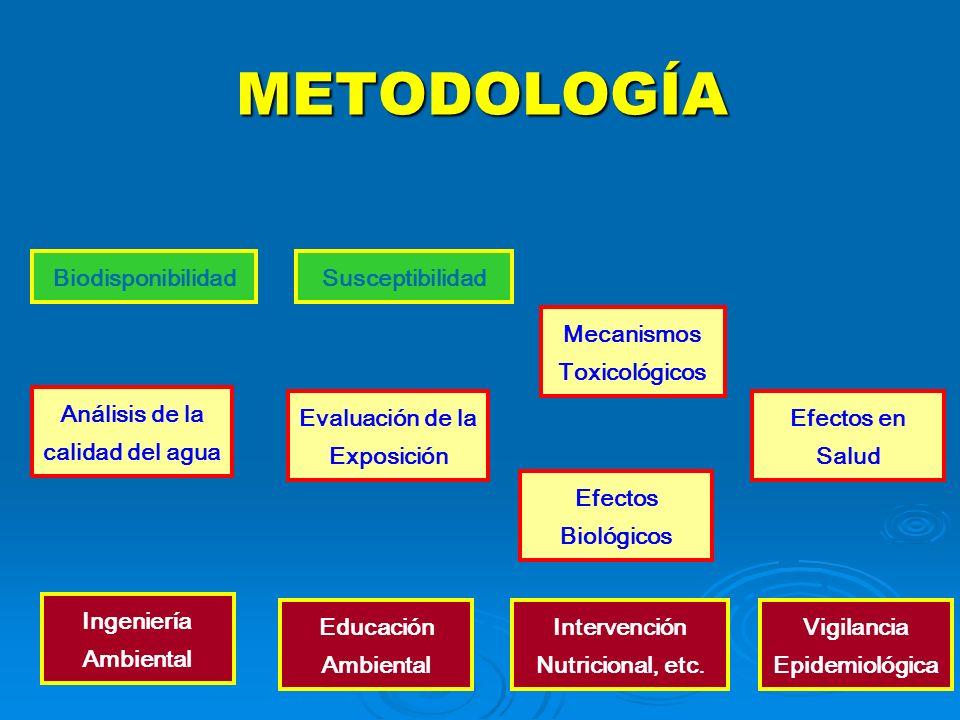 METODOLOGÍA Biodisponibilidad Susceptibilidad Mecanismos Toxicológicos