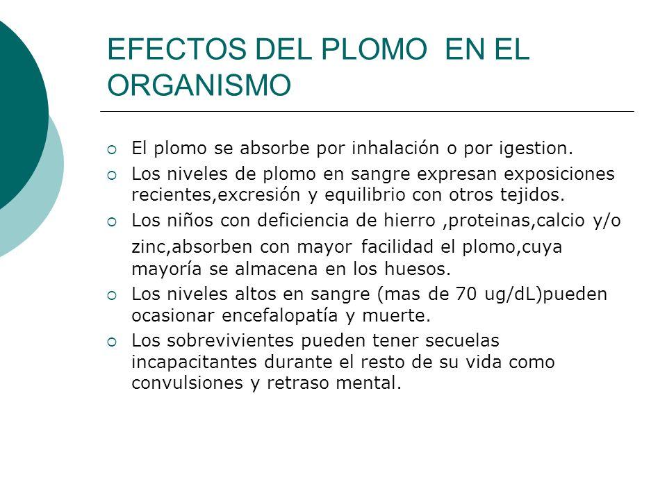EFECTOS DEL PLOMO EN EL ORGANISMO