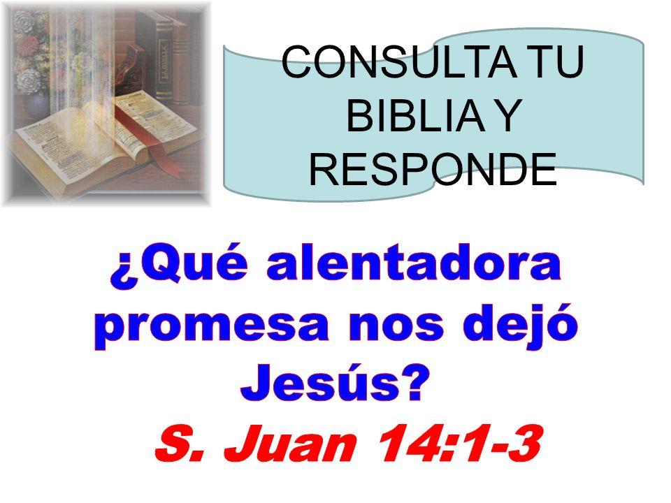 ¿Qué alentadora promesa nos dejó Jesús