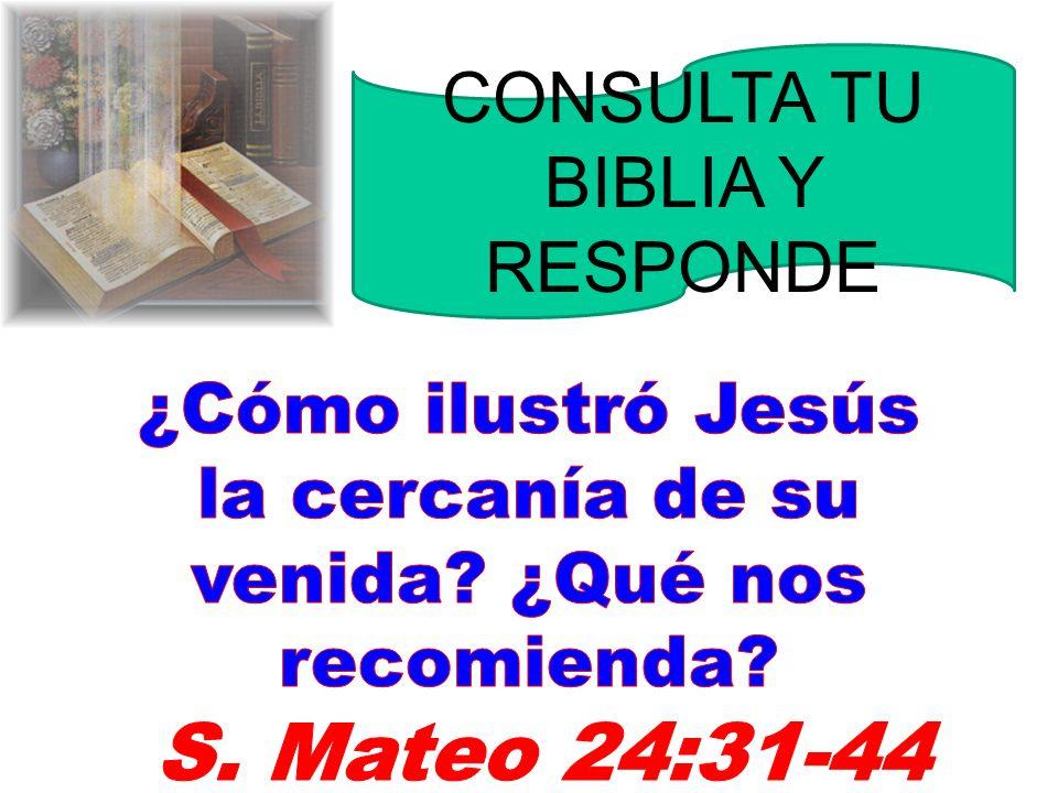 S. Mateo 24:31-44 CONSULTA TU BIBLIA Y RESPONDE