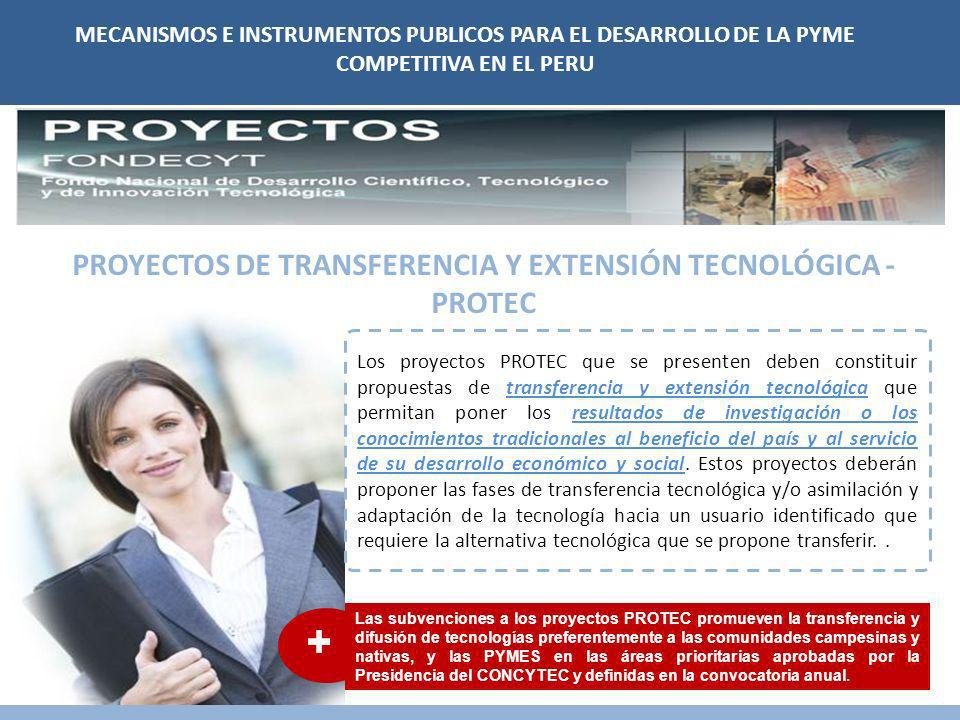 PROYECTOS DE TRANSFERENCIA Y EXTENSIÓN TECNOLÓGICA - PROTEC
