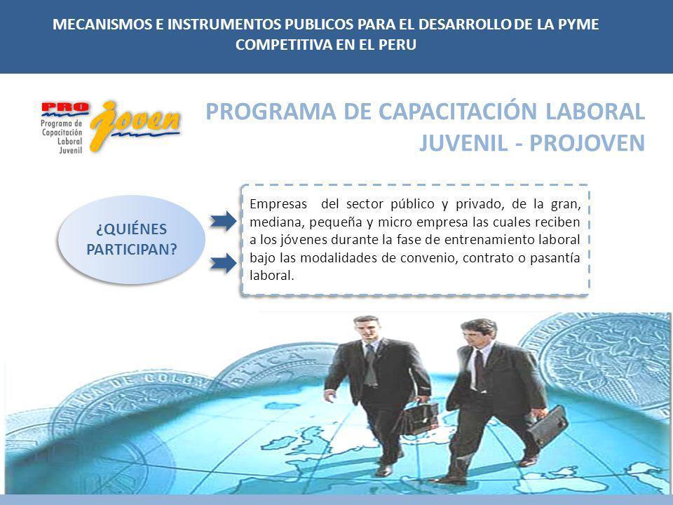 PROGRAMA DE CAPACITACIÓN LABORAL JUVENIL - PROJOVEN