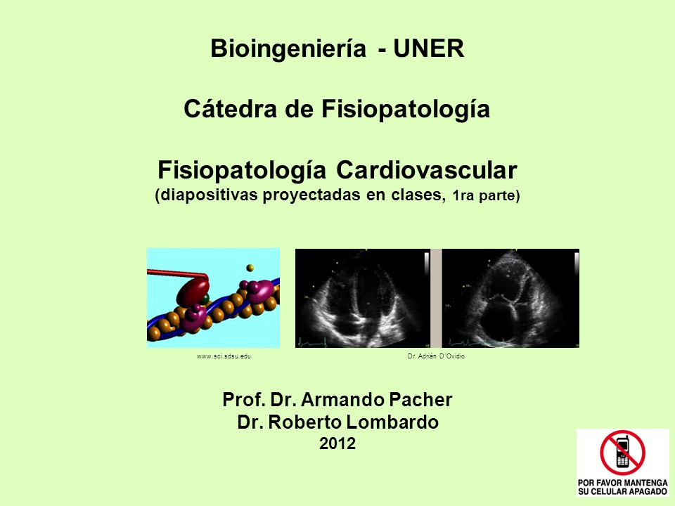 Bioingeniería - UNER Cátedra de Fisiopatología Fisiopatología Cardiovascular (diapositivas proyectadas en clases, 1ra parte) Prof. Dr. Armando Pacher Dr. Roberto Lombardo 2012