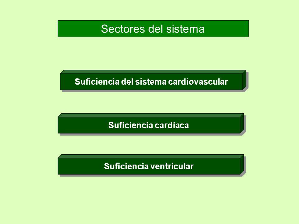 Suficiencia del sistema cardiovascular Suficiencia ventricular