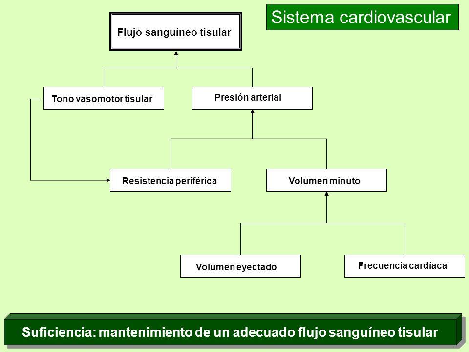 Suficiencia: mantenimiento de un adecuado flujo sanguíneo tisular