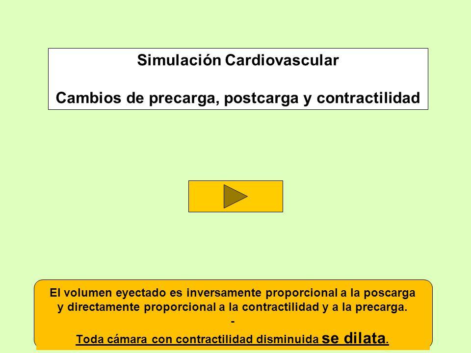 Simulación Cardiovascular