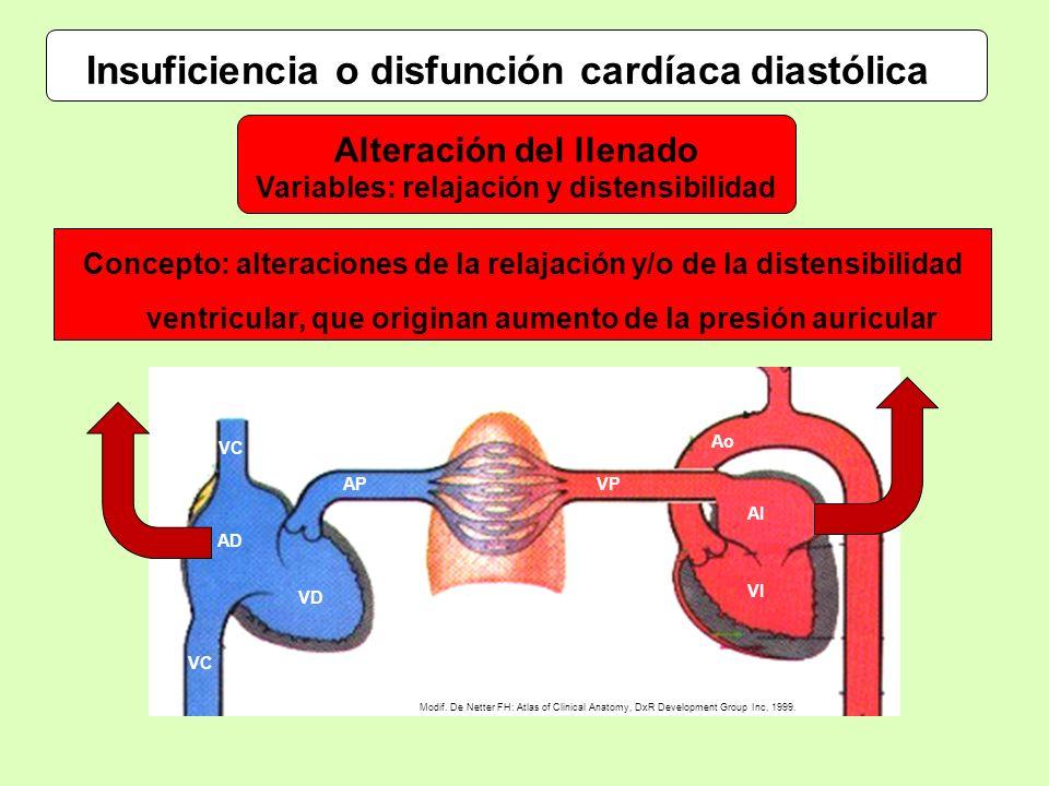 Insuficiencia o disfunción cardíaca diastólica