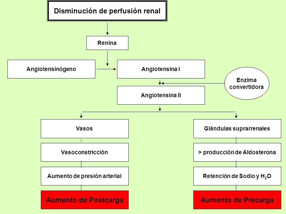 Disminución de perfusión renal